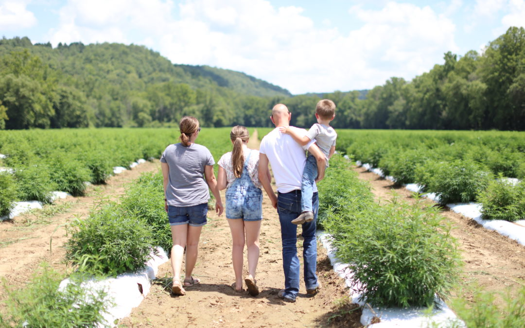 Family Farm Produces Organic CBD With You in Mind